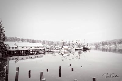 Gig Harbor Fleet in Winter