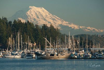 Mt. Rainier Overlooking Gig Harbor