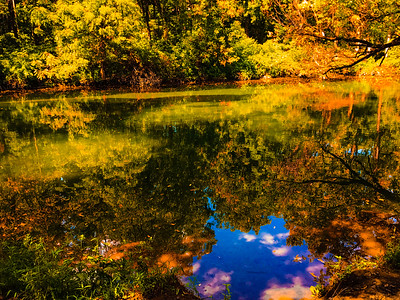 Calm and serene environment at Jacobsburg park