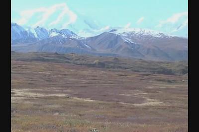 2004 Video Postcard