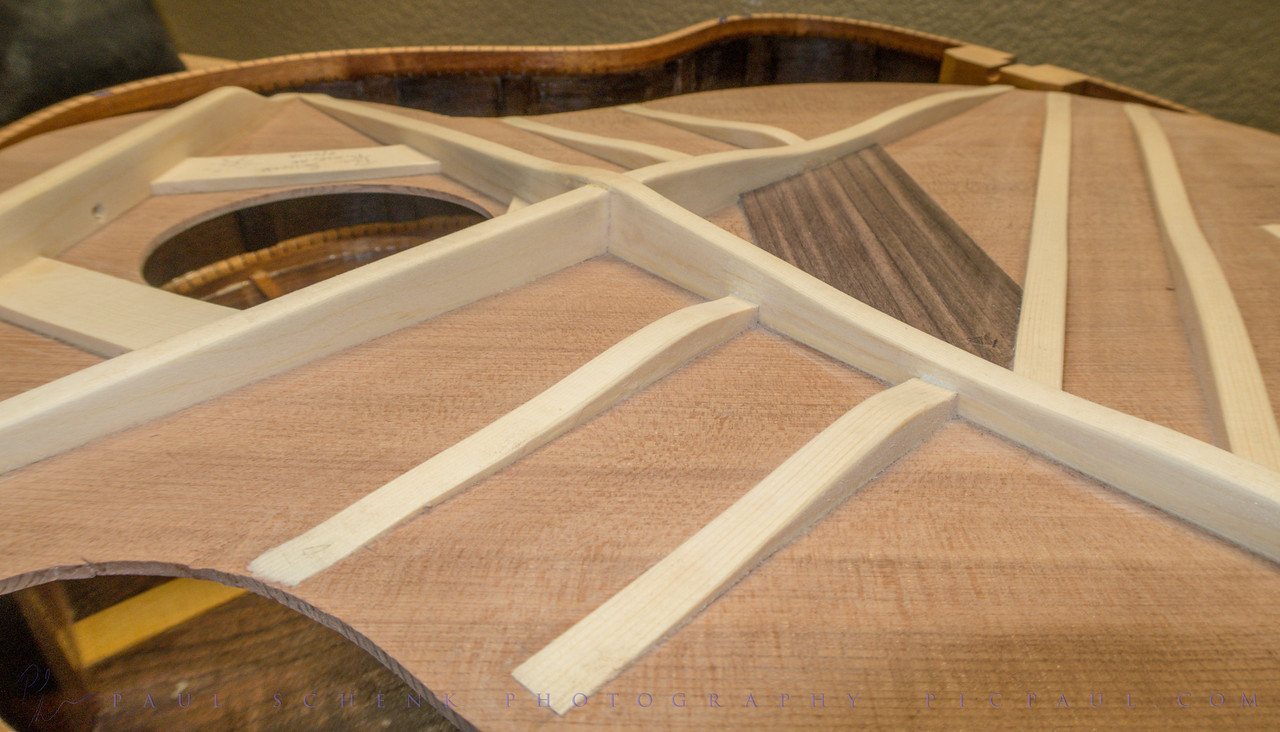Voiced Top, Redwood with European Spruce Braces