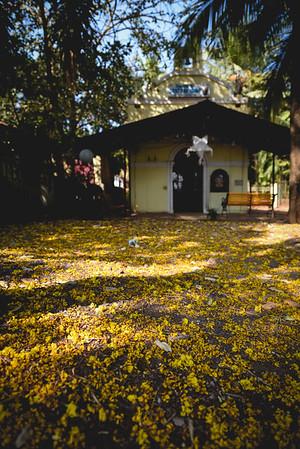 Goa's fall