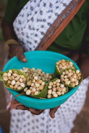Seasonal wild Zunna berries of Goa