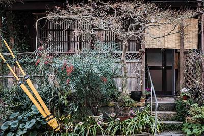 Japanese house lush