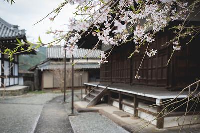 Honzenji Temple or 本善寺
