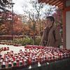 Katsuoji temple Daruma dolls