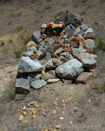 "I've never been able to figure out this grave in Big Bear's Holcomb Valley. As far as I can tell, the stones below spell out ""Bup"" and it may be a pet or work animal, but there are many unmarked graves throughout the area of miners who died during the Holcomb Valley Gold Rush of the late 1800s."