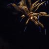 Fireworks08017