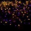 ginter lights_Nov282009_0008