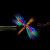 ginter lights_Nov282009_0027