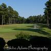 pro golf_090816_0057