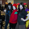 va comicon_112413_0005