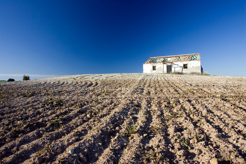 Abandoned country house on a wheat field, Spain