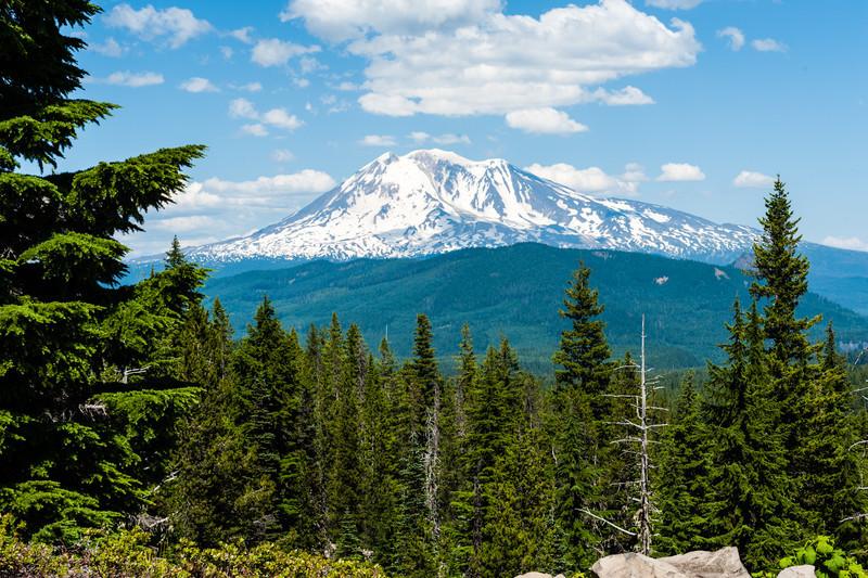 Mt. Adams<br /> Mt. Adams near the Indian Heaven Sawtooth & Huckleberry fields.