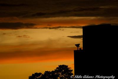 sunset_073109_0013