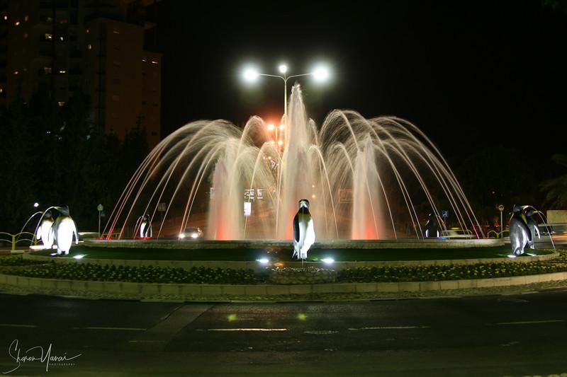 Night at the Penguin Fountain, Kiryat Motzkin, Israel