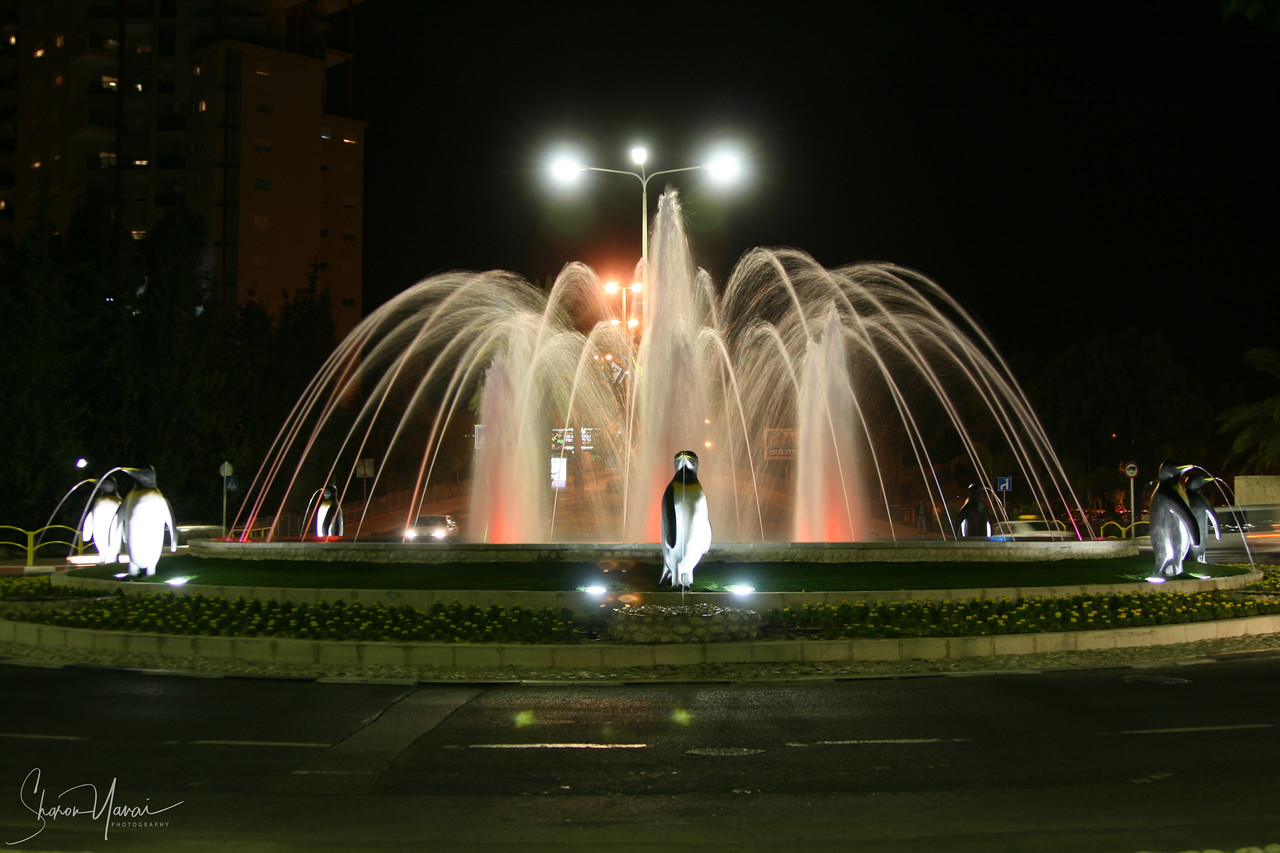 Night at the Penguin Fountain, Kiryat Motzkin, Israel