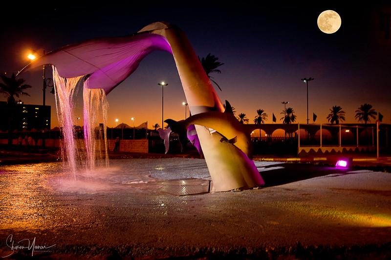 Night at the Whale Fountain, Kiryat Yam, Israel