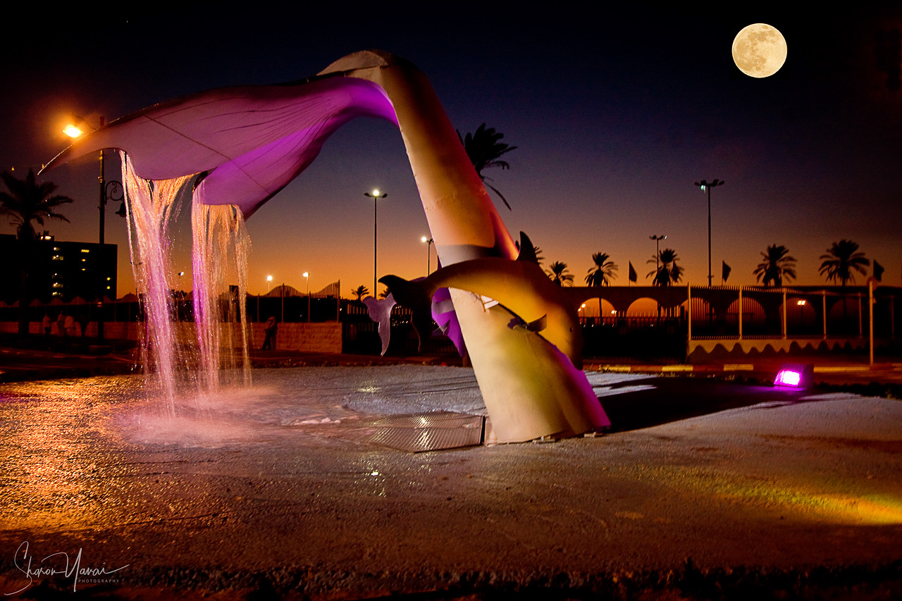 Night at the Whale Fountain, Kiryat Yam, Israel