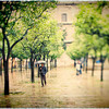 Man with an umbrella, Patio de los Naranjos, Seville, Spain. Tilted lens used for a shallower depth of field.