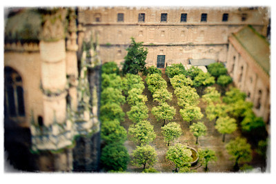 View of the Orange Tree Yard from the top of the Giralda tower, Seville, Spain. Tilted lens used for a shallower depth of field.