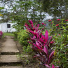 San Lorenzo Farm in San Ignacio, Belize
