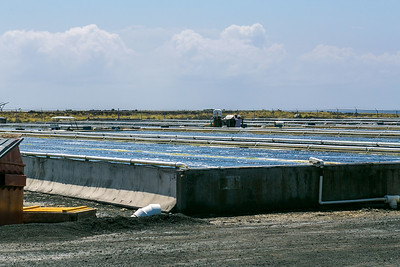 Big Island Abalone Corporation in Hawaii