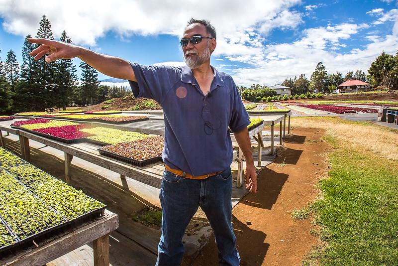 Hirabara Farms in Hawaii