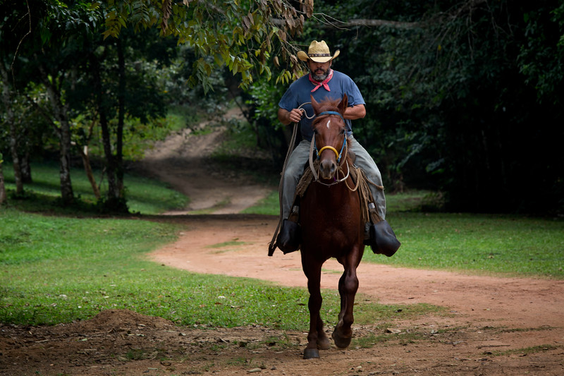 Martz Farm in San Ignacio, Belize
