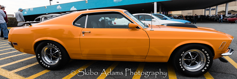 cars coffee_010516_0007