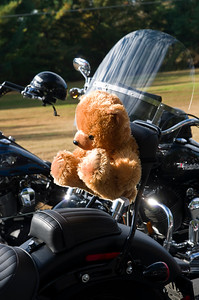 Blue Knights 31st Annual Teddy Bear Run