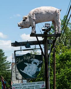 Blue Ridge Pig 2014