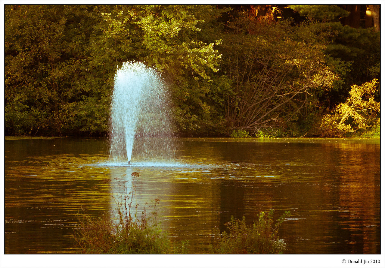 Day 47: Memorial Pond<br /> I had a hard time getting myself out of bed today.  I got home around midnight last night from the airport and I couldn't fall asleep until after 3am.  After a long day at the office, I drove home with my camera in the next seat looking for any 365 opportunity.  Getting desperate, I stopped at a little pond in Walpole to see if there's anything here.  Hmmm… a little fountain in middle of a tiny little pond.  Who would have thunk it?