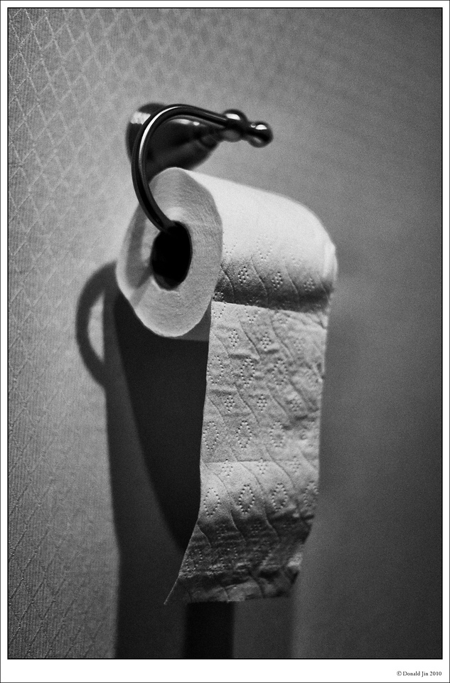 Day 42: Life<br /> Life is like a roll of toilet paper…<br /> It's wasted and taken for granted in the beginning, but as it gets close to the end, you are counting every square and they all seem so precious.