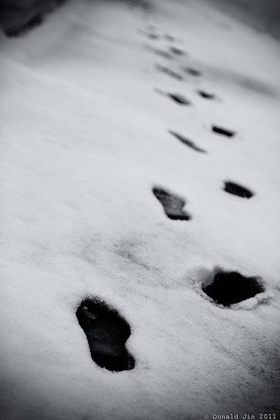 """Day 182 An Ode To Mary <br /> The Lord replied, """"The times when you have seen only one set of footprints, is when I carried you."""""""