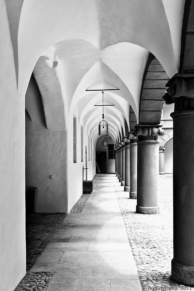 Day 341: Columns and Arches<br /> Walking around the small streets around Marianplatz in Munich, I walked into a courtyard that was surrounded by these arches and columns.  The early afternoon sunlight was a bit harsher than what I would have liked but it was still a great find.