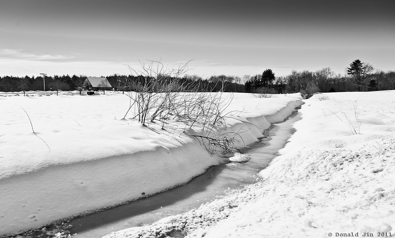 Day 184: Frozen Serenity<br /> Finally, a day of peace and quiet.   Tomorrow's forecast:  more snow and rain.