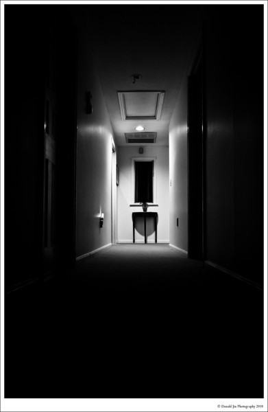 "Day 19: Empty Hallway<br /> Empty hallways give me the creeps. Whenever I stand in a long hallway in large buildings, whether it's a hospital, a school, an office building and especially hotels, I always conjure up a scene from the Stanley Kubrick's movie, ""The Shining.""  This hallway in my house isn't so intimidating but with the right lighting, it can still make me feel uneasy."