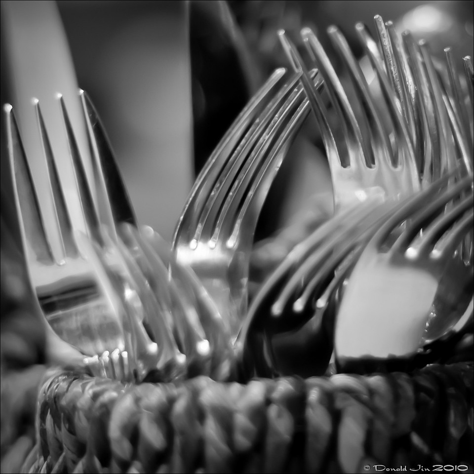Day 125: Three Tines a Lady<br /> Ever wonder why most forks have 4 tines?  <br /> It's because three is too few and you can easily poke yourself, while five is too many to properly skewer anything.  Ergo, 4 tines.