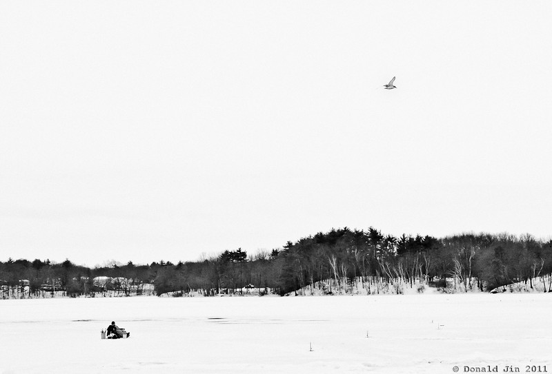 Day 194: Frozen Bites<br /> Lake Cochichuate in Natick is a popular spot for ice fishing.  Today, there was only one man on the entire lake.   A lone bird kept the fisherman entertained as he waits for some sign of life from below.