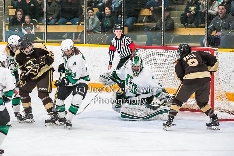 University of Manitoba Bisons vs Saskatchewan Huskies