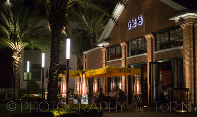Tampa-004-TNO_3630