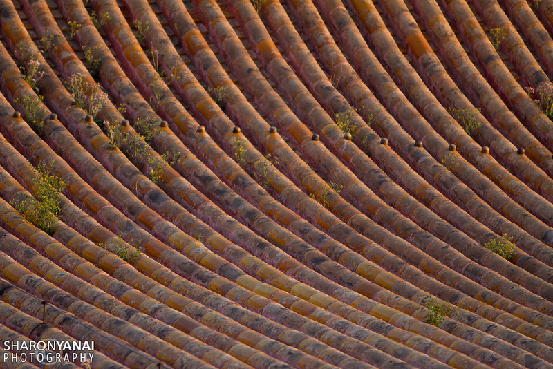 Roof at the Imprerial City, Beijing, China