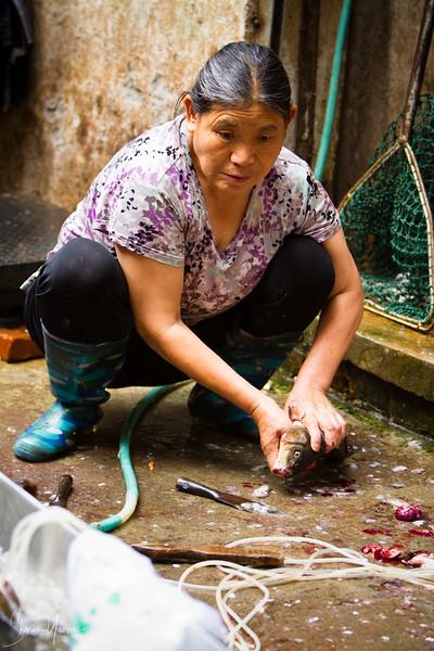 מוכרת דגים בשוק בליוקו, יונאן, סין