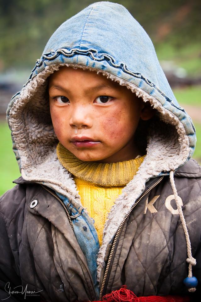 Mountains' kid, Shangrila