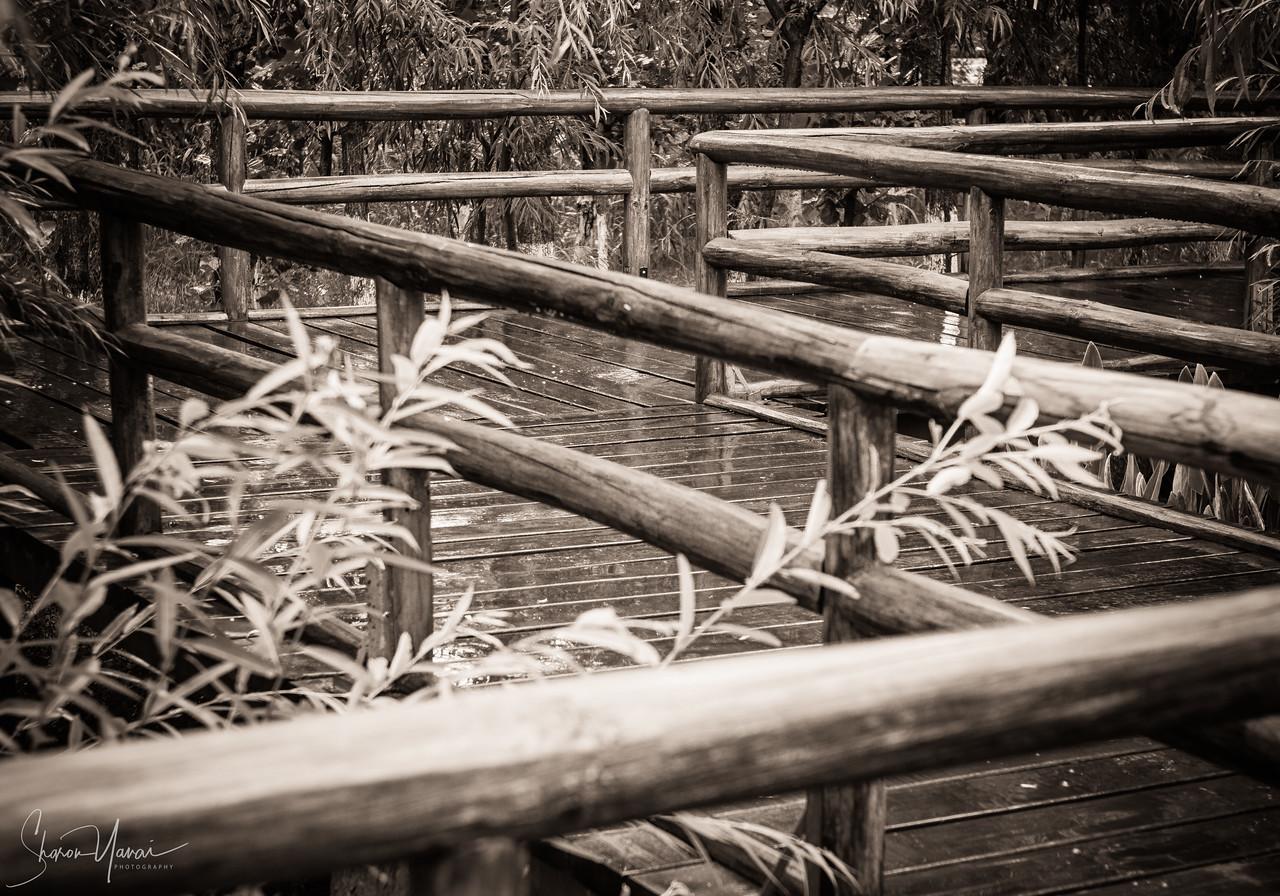 מעקה עץ על אגם דאלי