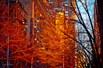 Sunrise on the streets of Manhattan, NY, USA