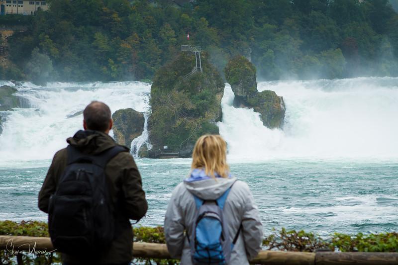 Looking at the Rhine Falls, Switzerland