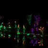 ginter lights_Nov282009_0020