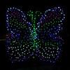 ginter lights_Nov282009_0005